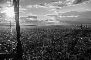 Zicht over Parijs vanop Tour Montparnasse