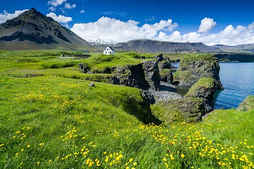 De kust van Arnarstapi, IJsland sur