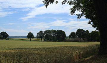 Boerderijtje Zuid Limburg van MSP Canvas