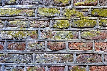 Stadtmauer Zwolle von Frans Blok