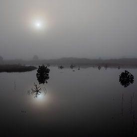 Mistige ochtend Vlieland. van Gerard Koster Joenje (Vlieland, Amsterdam & Lelystad in beeld)