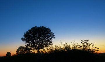 Blauw uurtje na zonsondergang van A'da de Bruin