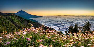 Tenerife in Spanje, kijkend naar de wolken net na zonsondergang. van Voss Fine Art Fotografie