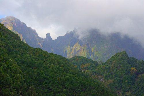 Bergen van Madeira von Michel van Kooten