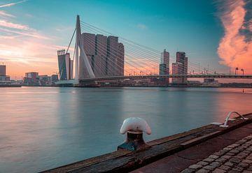 Bonjour Rotterdam sur Arisca van 't Hof