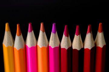 Farbstifte vor schwarzem Hintergrund von Elly Damen