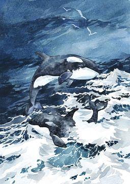 Orcas von Karin Schwarzgruber