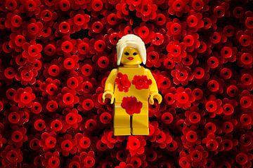 Lego American beauty filmposter van