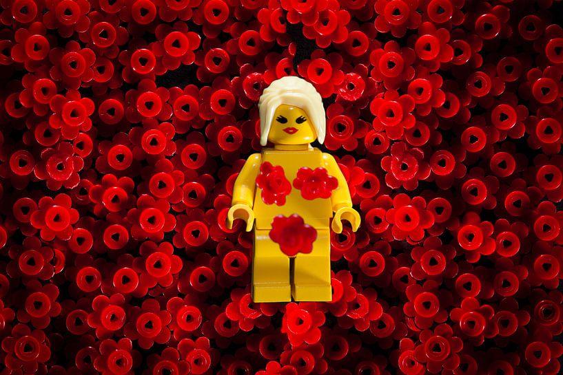 Lego American beauty filmposter van Victor van Dijk