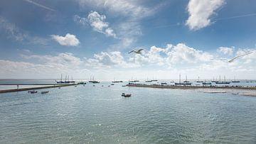 Hafen Terschelling mit Booten und Möwen von Wad of Wonders