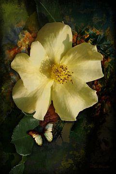 Eine gelbe Wildrose, umgeben von bunten Pinselstrichen. von Helga Blanke