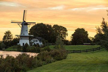 Windmolen in Deil Nederland van Marcel Derweduwen