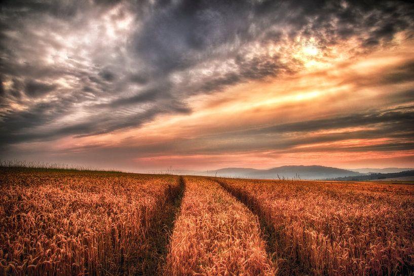 Zonsondergang in het duitse veld van Joost Lagerweij