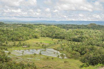 Filipijnen - Chocolate Hills Bohol van Chantal Cornet