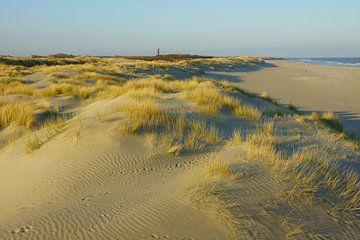 Duinen, strand en zee van Michel van Kooten