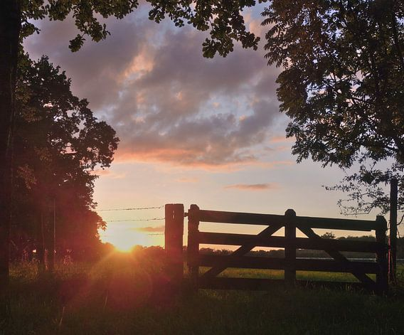 Zonsondergang in Amelisweerd
