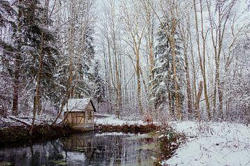 Winter am kleinen Häuschen am Teich