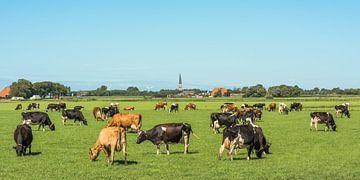 Landschaft im Sommer in Friesland in der Nähe der Stadt Tzum von Harrie Muis