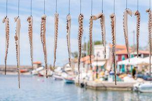 Inktvissen hangen te drogen in Griekse haven