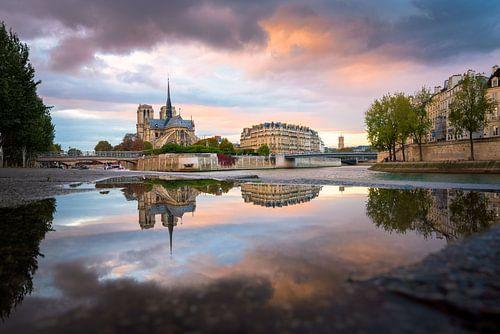 Reflections of the Notre Dame de Paris van Maarten Mensink