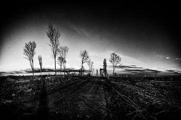 Landscape IV van
