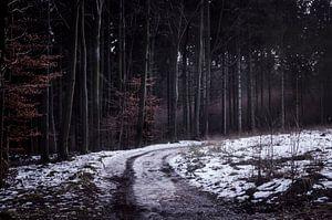Het onbekende pad