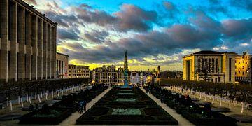 La Bruxelles est magnifique van Roy Poots