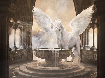 Pegasus van de hemel van Babette van den Berg