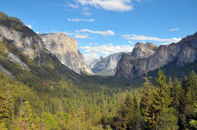 Yosemite Valley van Paul van Baardwijk