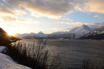 Zon in een winters fjord van Renzo de Jonge