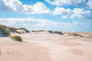Dünen an der Nordseeküste bei Skagen von Florian Kunde