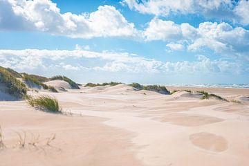 Dunes sur la côte de la mer du Nord près de Skagen sur Florian Kunde