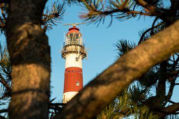 Bornrif, Leuchtturm von Ameland von Nicole Nagtegaal