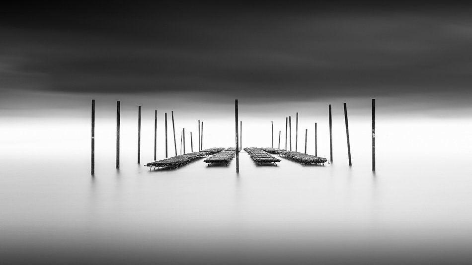 Abgegrenzt - Austern im Meer von Niels Devisscher