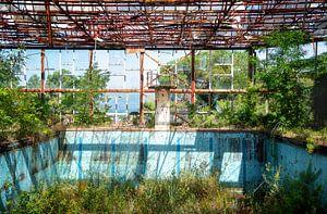 Verlassenes Schwimmbad in schlechtem Zustand. von Roman Robroek