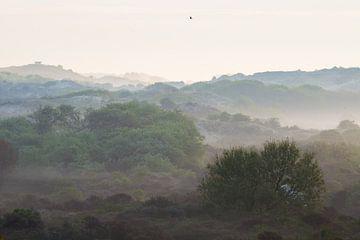 Duinen in mist met bunker van Menno van Duijn
