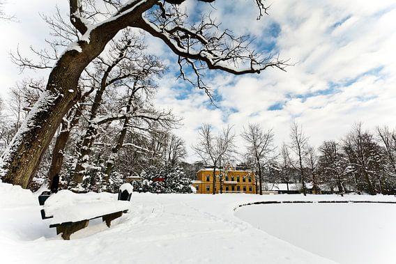 Winter in Nienoord van Ron ter Burg