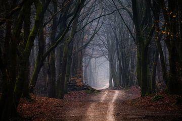 Adem van de wildernis van Tvurk Photography