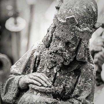 Les statues en arche d'air ou les becs de la cathédrale Saint-Jean à 's-Hertogenbosch, sur Marcel Bakker