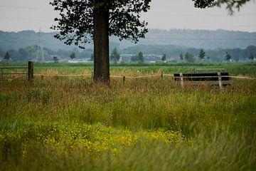 Wageningen Innenfeld von Case Hydell