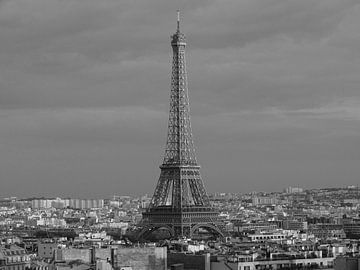 De ijzeren Dame en de daken van Parijs van Michaelangelo Pix