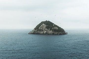 Uitzicht op het kleine eiland Bergeggi in Ligurië en vliegende meeuwen van Besa Art