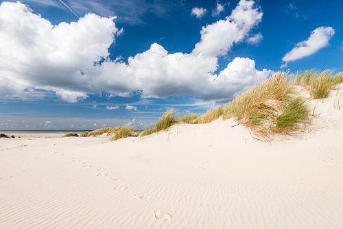 Voetstappen in het zand van