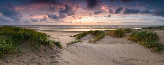 Die Dünen von Bloemendaal aan Zee bei Sonnenuntergang