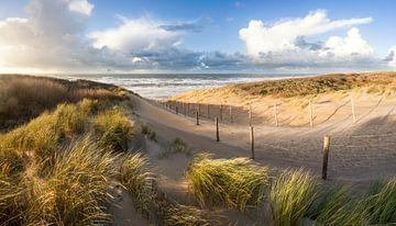 strand en duinen - stormlucht van Arjan van Duijvenboden