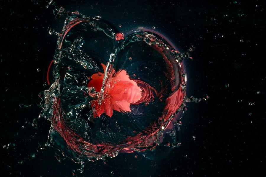Splash I van Richard Marks