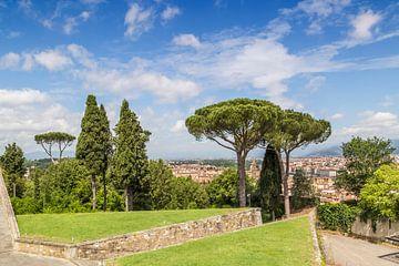 FLORENZ Aussicht vom Forte di Belvedere von Melanie Viola
