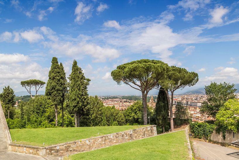 FLORENCE View from Forte di Belvedere van Melanie Viola