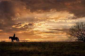 lone rider von Iman Azizi