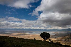 Ngorongoro krater van Peter Vruggink